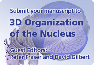 3D Organisation of the nucleus