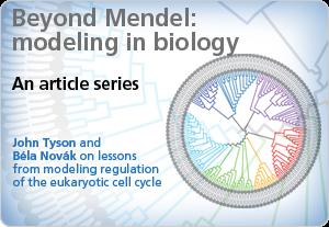 Beyond Mendel: modelling in biology -- An article series
