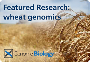 Wheat genomics: featured research